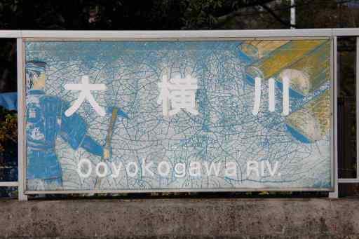 02262011oyk_002_z