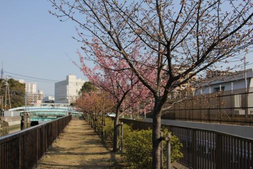 02262011oyk_010_z1